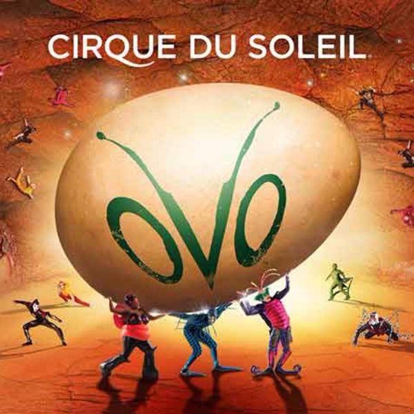 cirque-OVO.jpg